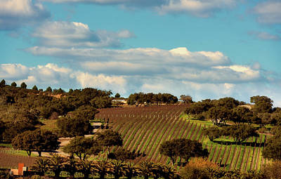 Photograph - Lush California Farmland  by L O C