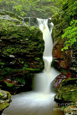 Photograph - Lush Green And Red Rock Falls by Adam Jewell