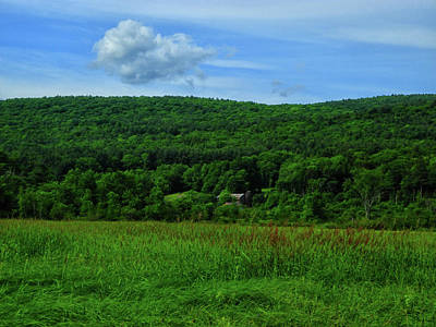 Photograph - Lush Green Everything On The Ma At by Raymond Salani III