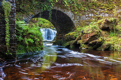 Photograph - Lush River Killarney Ireland by Pierre Leclerc Photography