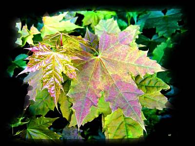 Maple Leaf Art Mixed Media - Lush Spring Foliage by Will Borden