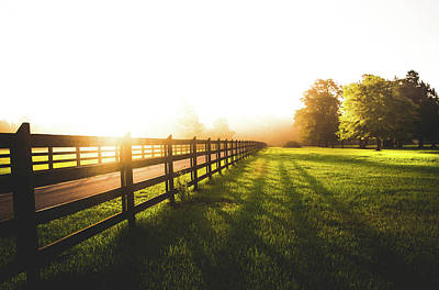 Photograph - Lush Sunrise In The Countryside by Shelby Young