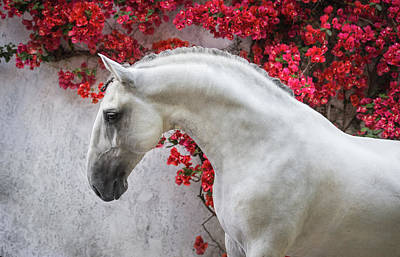 Lusitano Portrait In Red Flowers Art Print by Ekaterina Druz