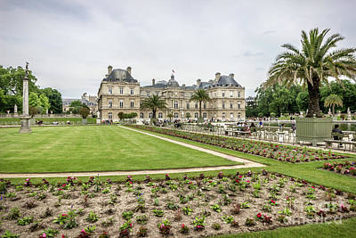 Blue Begonias Photograph - Luxembourg Gardens And Palace, Paris by Liesl Walsh