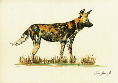 Dog Poster Painting - Lycaon Wild African Dog by Juan  Bosco