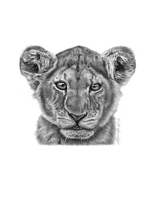 Drawing - Lyla The Lion Cub by Abbey Noelle