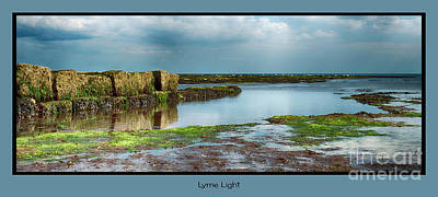 Photograph - Lyme Light by Wendy Wilton