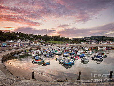 Photograph - Lyme Regis Harbour by Colin and Linda McKie