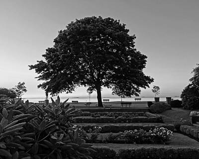 Lynch Park At Dawn Beverly Ma Black And White Art Print by Toby McGuire