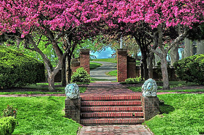 Photograph - Lynch Park In The Spring by Mike Martin