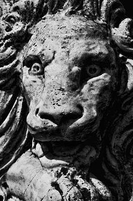 Photograph - Lynch Park Lion by Mike Martin