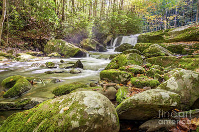 Photograph - Lynn Camp Prong Cascades by Patrick Shupert