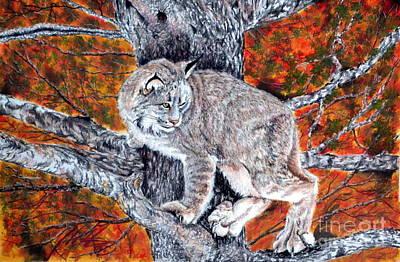 Lynx In A Tree Original
