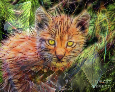 Digital Art - Lynx Kitten by John Beck