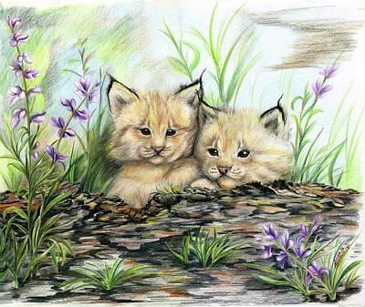 Lynx Kittens Original