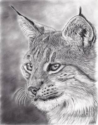 Lynx Original