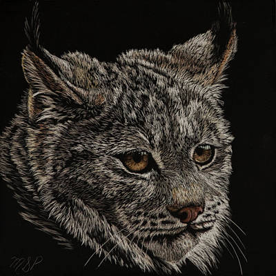 Painting - Lynx by Margaret Sarah Pardy