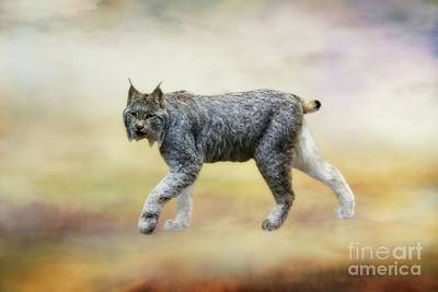 Digital Art - Lynx by Suzanne Handel