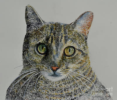 Watercolor Pet Portraits Painting - Lyon by Anthony Butera