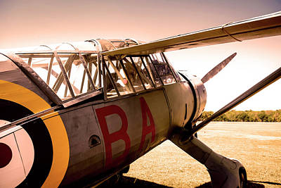 Photograph - Lysander At Sunset by Chris Smith