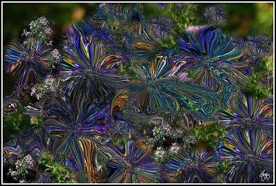 Photograph - Lysergic Asters by Wayne King