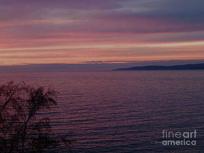 Photograph - M Landscapes Collection No. L219 by Monica C Stovall