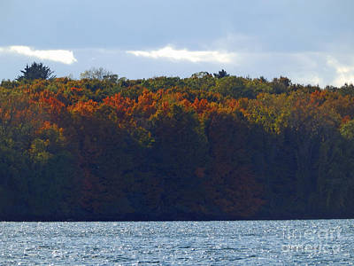 Photograph - M Landscapes Fall Collection No. Lf50 by Monica C Stovall