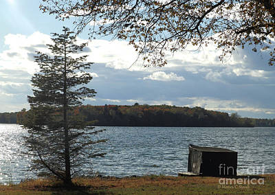 Photograph - M Landscapes Fall Collection No. Lf52 by Monica C Stovall