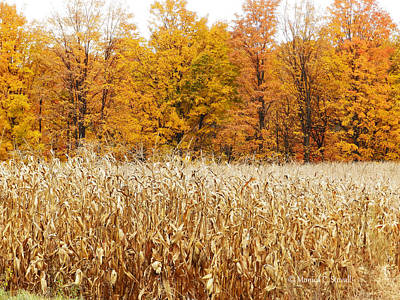 Photograph - M Landscapes Fall Collection No. Lf62 by Monica C Stovall