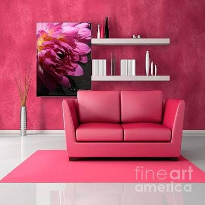Photograph - M Shades Of Pink Flowers Collection No. P55 by Monica C Stovall