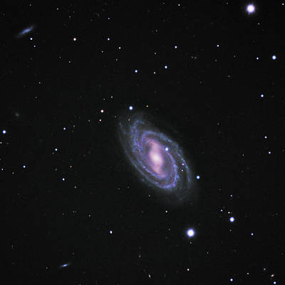 Photograph - M109 A Barred Spiral Galaxy by Alan Vance Ley