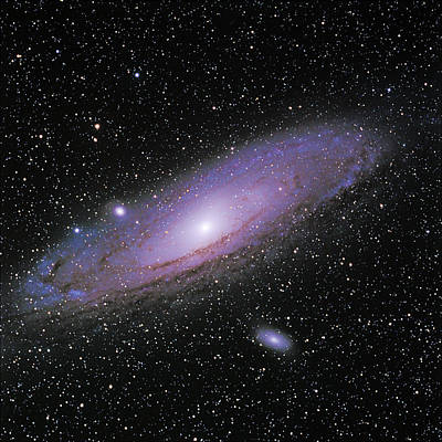 Photograph - M31-- The Andromeda Galaxy by Alan Vance Ley
