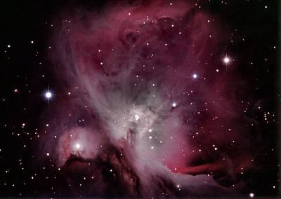 Photograph - M42 Orion Nebula by Alan Conder