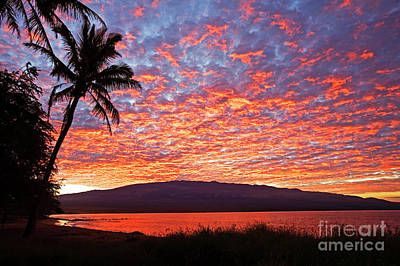 Photograph - Ma'alaea Dawn by David Olsen