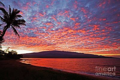 Photograph - Ma'alaea Sunrise by David Olsen
