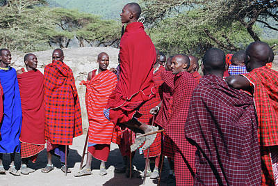 Photograph - Maasai Adumu Dance Take One by Harvey Barrison