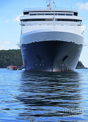 Photograph - Maasdam In Bar Harbor 1 by Randall Weidner