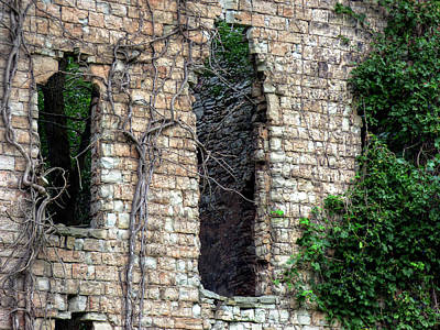 Photograph - Mabee Mill Ruins - Royalton Ny by Leslie Montgomery