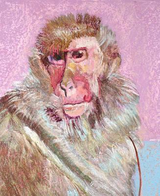 Macaque Art Print
