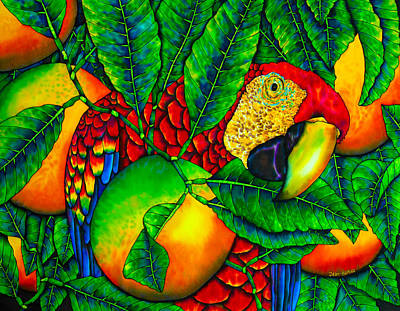 Macaw And Oranges - Exotic Bird Art Print by Daniel Jean-Baptiste