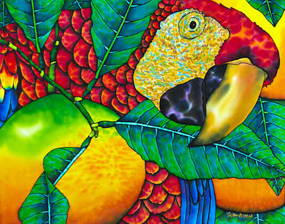 Macaw Close Up - Exotic Bird Art Print by Daniel Jean-Baptiste