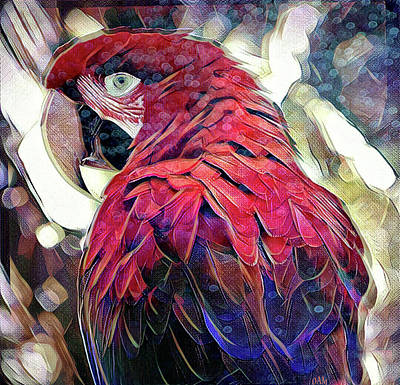 Digital Art - Macaw by David Mckinney