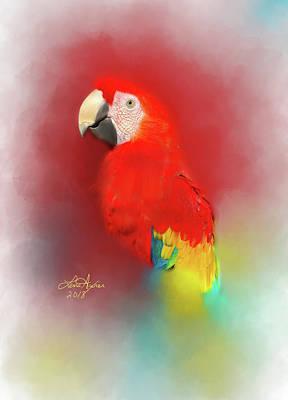 Digital Art - Macaw by Lena Auxier