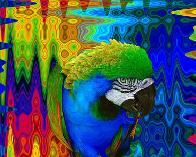 Macaw Digital Art - Macaw Madess by Amanda Vouglas