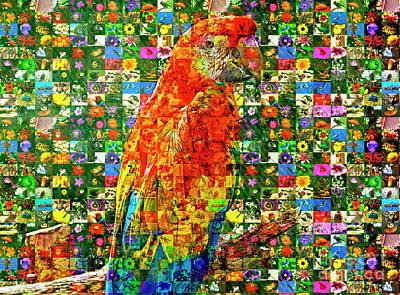 Macaw Mixed Media - Macaw Mosaic by Edelberto Cabrera