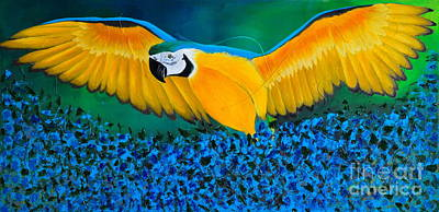 Macaw On The Rise Original