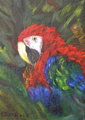 Painting - Macaw Parrot I by Cheryl Damschen