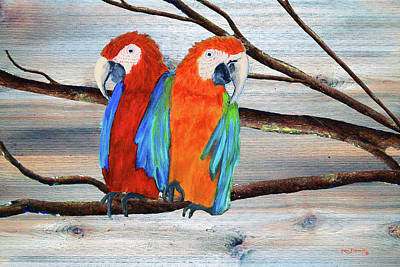 Canary Mixed Media - Macaw Parrots Rustic Background by Ken Figurski