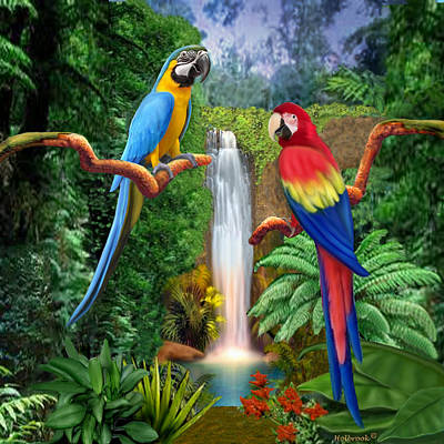 Digital Art - Macaw Tropical Parrots by Glenn Holbrook