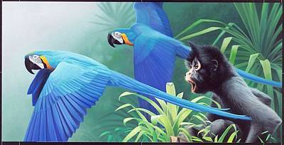 Daniel Pierce Painting - Macaws And Spider Monkey by Daniel Pierce